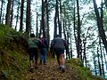 Hiking in Himachal Pradesh 01.jpg