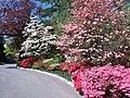 Hillwood Gardens in April (17410185460).jpg