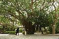 Himeyuri Cenotaph02n3104.jpg
