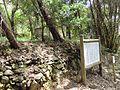 Hofu Mt.Chausuyama battlefield.JPG