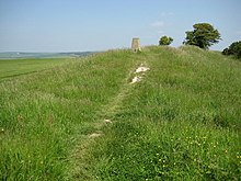 Hollingbury Castle Triangulation Pillar - geograph.org.uk - 840731.jpg