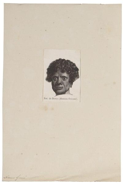 File:Homo sapiens - Papoea, Nieuw-Guinea - 1700-1880 - Print - Iconographia Zoologica - Special Collections University of Amsterdam - UBA01 IZ19500096.tif