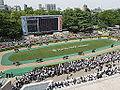 Horse racing @ Tokyo Race Course @ Fuchu (14117878672).jpg