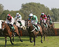 Horses racing (2881596967).jpg