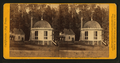 House on Stump, 36 feet in diam. - Calaveras Co, by John P. Soule.png