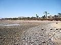 Hurghada Albatros Palace 02.jpg