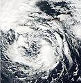 Hurricane Noel- closeup.JPG