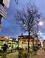 Hyde Market Christmas 2009 - geograph.org.uk - 1617788.jpg