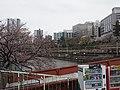 Ichigaya (49703432793).jpg