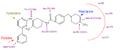 Imatinib bound to receptor.PNG
