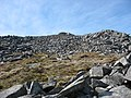 In the lee of the Carnedd y Filiast summit - geograph.org.uk - 427744.jpg