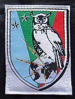 Insigne de la Brigade de Renseignement.JPG