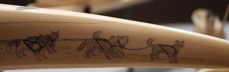 File:Inupiat, avorio di tricheco inciso, da king island (alaska), 1930 ca. 06 slitta con cani.jpg