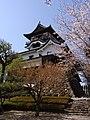 Inuyama-jo Castle - panoramio.jpg
