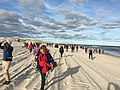 Island Beach State Park First Day Hike 2019 large group on beach.jpg
