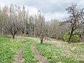 Izvalta parish, Latvia - panoramio - BirdsEyeLV (9).jpg