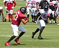 Jacob Tamme and Vic Beasley, 2016.jpg