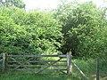 James Wood - geograph.org.uk - 1388095.jpg