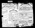 Jancsi Rigó petition for naturalization from 1919.jpg