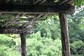 Japanese Hill-and-Pond Garden, Brooklyn 14.JPG
