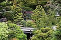 Japanese Tea Garden (San Francisco) (TK5).JPG
