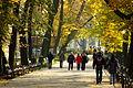 Jesień na Plantach8.jpg