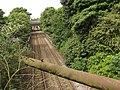 Jewellery Line - Roebuck Lane, Smethwick - London Midland 172 222 (7372725678).jpg