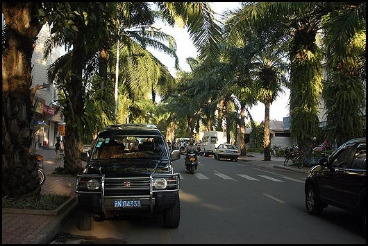 Jinghong-street-with-palms