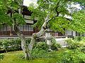Jojakkoji - Kyoto - DSC06152.JPG