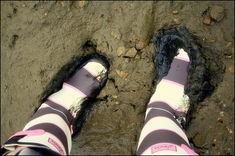 File:Joules wellington boots.jpg
