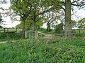 Junction of footpath and bridleway near Wyndham Farm - geograph.org.uk - 1273933.jpg