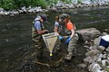 June 2012, Sampling for macroinvertebrates (7984301210).jpg
