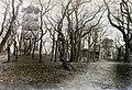 Károly-kilátó, 1936-ban helyére épült a kőkilátó. Fortepan 95514.jpg