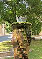 Königsbrunn am Wagram - Brunnen.jpg