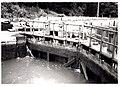 Kanaal Bocholt-Herentals met sluizen - 344188 - onroerenderfgoed.jpg