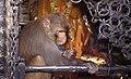 Katmandou 16.jpg