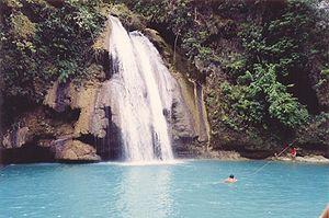 Badian, Cebu - Image: Kawasan Falls Cebu Island