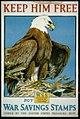 Keep him free-Buy War Savings Stamps issued by the United States Treasury Dept. - Charles Livingston Bull ; Ketterlinus, Phila. LCCN2002712087.jpg