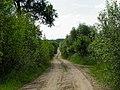 Kelias - panoramio (6).jpg