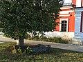 Khram Kazanskoy Ikony Troitsk 2355 (45657728962).jpg