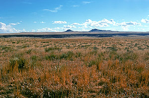 Kiowa National Grassland - Kiowa National Grassland with Rabbit Ear Mountains in the background.