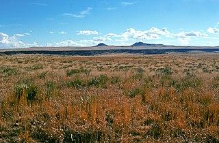 Kiowa National Grassland
