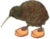 Kiwi in Clogs