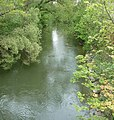 Kleine Donau - panoramio.jpg