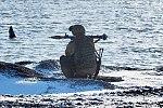 Kotelny Island 08.jpg