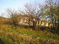 Kurskoe old house 2.JPG