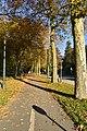 La piste cyclable du boulevard du Souverain (22507834908).jpg