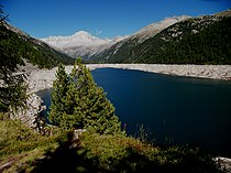 Lago di Malga Bissina.jpg
