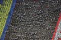 Laika ac Arirang Mass Games (7934595324).jpg