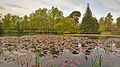 Lake at Farmleigh.jpg